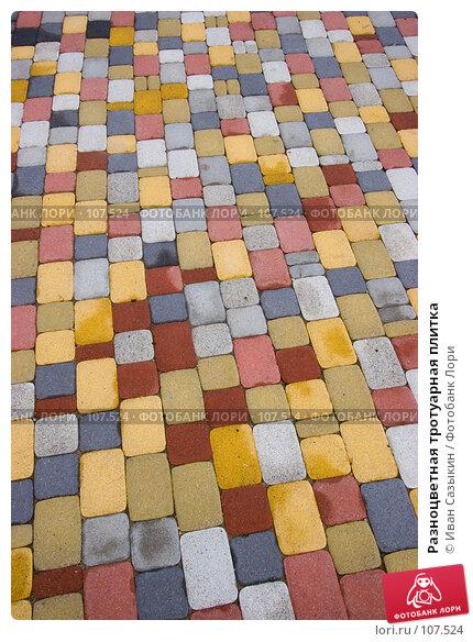 Разноцветная тротуарная плитка, фото № 107524, снято 15 октября 2007 г. (c) Иван Сазыкин / Фотобанк Лори