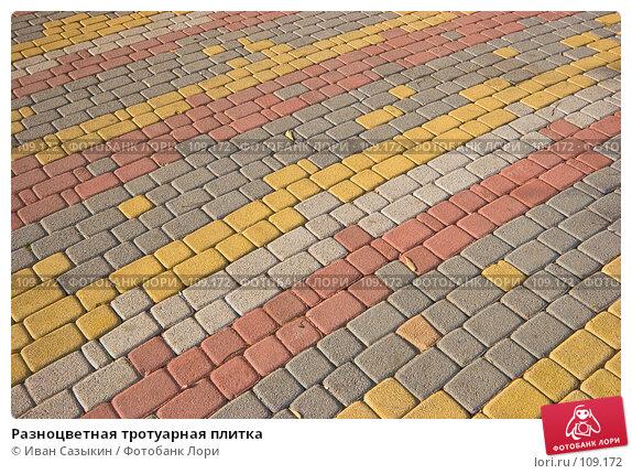 Разноцветная тротуарная плитка, фото № 109172, снято 23 октября 2007 г. (c) Иван Сазыкин / Фотобанк Лори