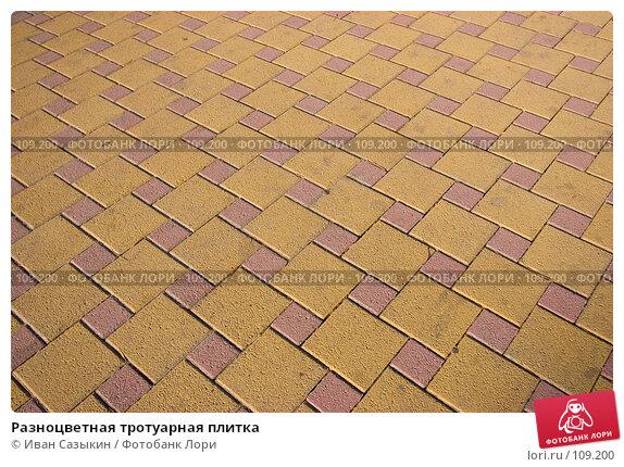 Разноцветная тротуарная плитка, фото № 109200, снято 23 октября 2007 г. (c) Иван Сазыкин / Фотобанк Лори