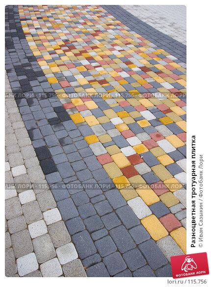 Разноцветная тротуарная плитка, фото № 115756, снято 15 октября 2007 г. (c) Иван Сазыкин / Фотобанк Лори