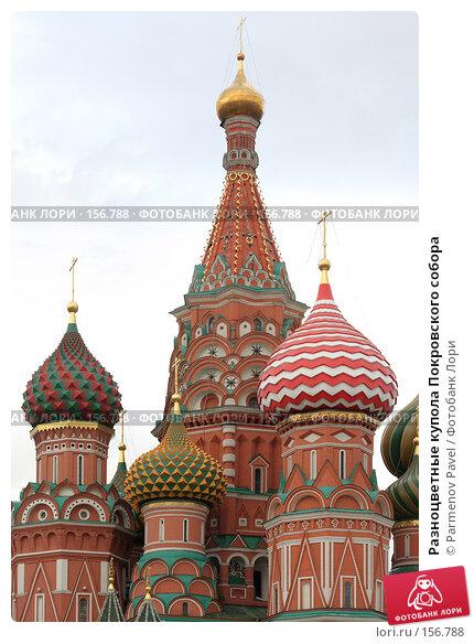 Купить «Разноцветные купола Покровского собора», фото № 156788, снято 21 декабря 2007 г. (c) Parmenov Pavel / Фотобанк Лори