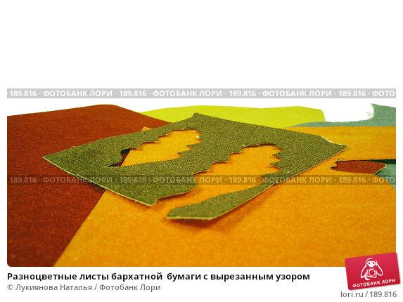Разноцветные листы бархатной  бумаги с вырезанным узором, фото № 189816, снято 29 января 2008 г. (c) Лукиянова Наталья / Фотобанк Лори