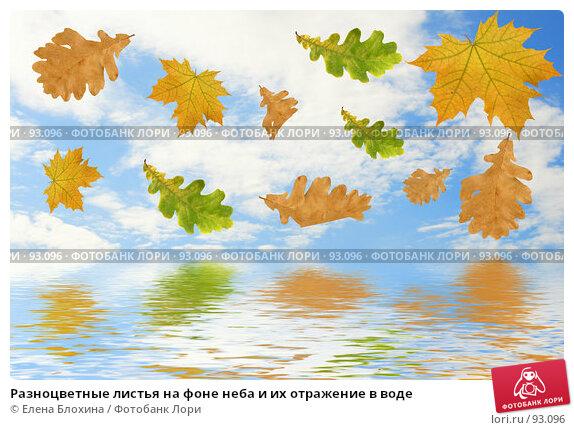 Разноцветные листья на фоне неба и их отражение в воде, фото № 93096, снято 22 сентября 2007 г. (c) Елена Блохина / Фотобанк Лори