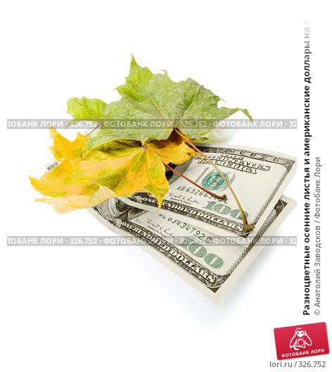 Разноцветные осенние листья и американские доллары на белом фоне, фото № 326752, снято 6 февраля 2007 г. (c) Анатолий Заводсков / Фотобанк Лори