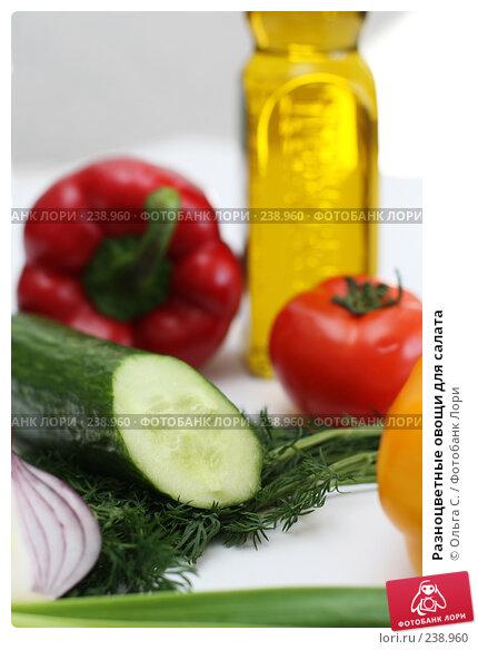 Разноцветные овощи для салата, фото № 238960, снято 31 марта 2008 г. (c) Ольга С. / Фотобанк Лори