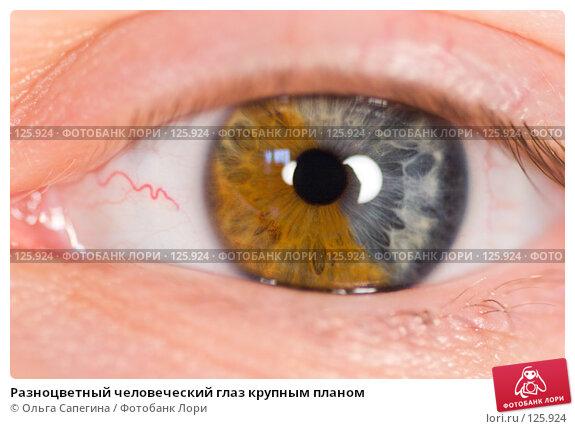 Разноцветный человеческий глаз крупным планом, фото № 125924, снято 14 июля 2007 г. (c) Ольга Сапегина / Фотобанк Лори