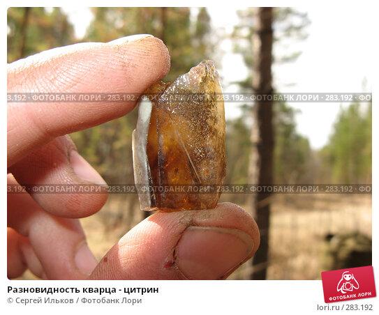 Разновидность кварца - цитрин, фото № 283192, снято 5 мая 2008 г. (c) Сергей Ильков / Фотобанк Лори