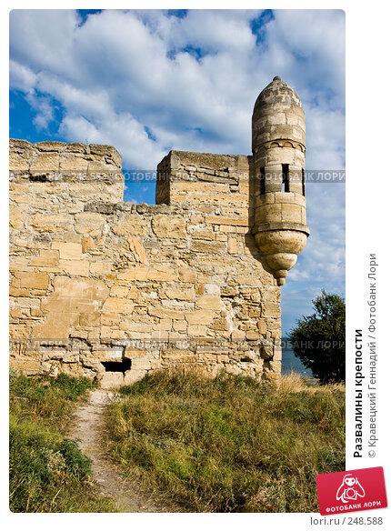 Развалины крепости, фото № 248588, снято 10 августа 2005 г. (c) Кравецкий Геннадий / Фотобанк Лори
