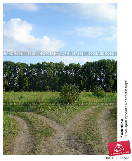 Купить «Развилка», фото № 167564, снято 16 июля 2007 г. (c) Насыров Руслан / Фотобанк Лори
