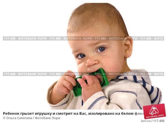 Ребенок грызет игрушку и смотрит на Вас, изолировано на белом фоне, фото № 117488, снято 7 ноября 2007 г. (c) Ольга Сапегина / Фотобанк Лори