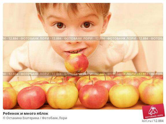 Ребенок и много яблок, фото № 12884, снято 22 октября 2006 г. (c) Останина Екатерина / Фотобанк Лори
