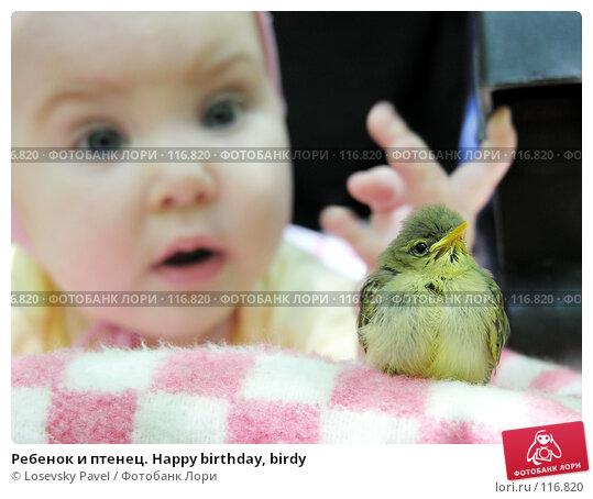 Ребенок и птенец. Happy birthday, birdy, фото № 116820, снято 4 июля 2005 г. (c) Losevsky Pavel / Фотобанк Лори