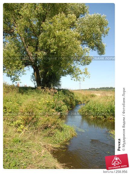 Речка, фото № 258956, снято 13 августа 2007 г. (c) Мударисов Вадим / Фотобанк Лори
