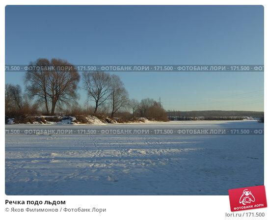 Речка подо льдом, фото № 171500, снято 3 января 2008 г. (c) Яков Филимонов / Фотобанк Лори