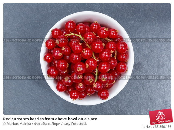 Red currants berries from above bowl on a slate. Стоковое фото, фотограф Markus Mainka / easy Fotostock / Фотобанк Лори