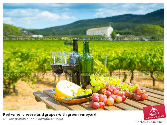 Купить «Red wine, cheese and grapes with green vineyard», фото № 28023020, снято 20 марта 2019 г. (c) Яков Филимонов / Фотобанк Лори