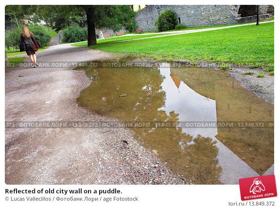 Купить «Reflected of old city wall on a puddle.», фото № 13849372, снято 19 февраля 2020 г. (c) age Fotostock / Фотобанк Лори