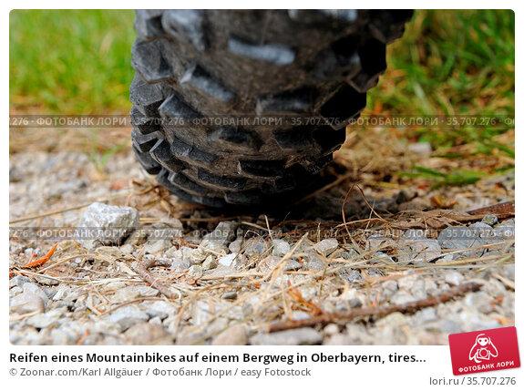 Reifen eines Mountainbikes auf einem Bergweg in Oberbayern, tires... Стоковое фото, фотограф Zoonar.com/Karl Allgäuer / easy Fotostock / Фотобанк Лори