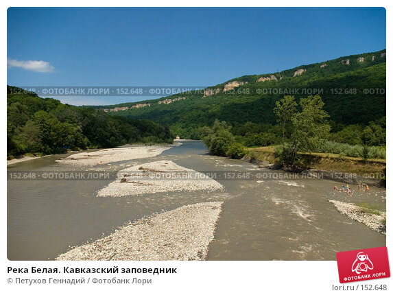 Купить «Река Белая. Кавказский заповедник», фото № 152648, снято 10 августа 2007 г. (c) Петухов Геннадий / Фотобанк Лори