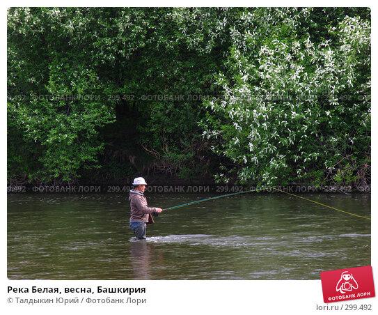 Река Белая, весна, Башкирия, фото № 299492, снято 24 мая 2008 г. (c) Талдыкин Юрий / Фотобанк Лори