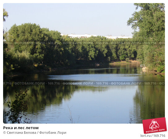 Река и лес летом, фото № 169716, снято 21 августа 2005 г. (c) Светлана Белова / Фотобанк Лори