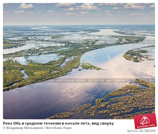 Река Обь в среднем течении в начале лета, вид сверху, фото № 25720016, снято 21 июня 2015 г. (c) Владимир Мельников / Фотобанк Лори