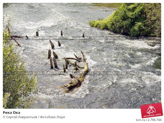Купить «Река Ока», эксклюзивное фото № 2798744, снято 9 августа 2011 г. (c) Сергей Лаврентьев / Фотобанк Лори