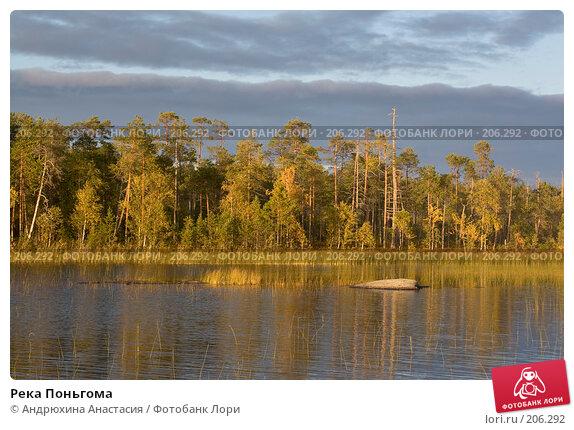 Купить «Река Поньгома», фото № 206292, снято 11 сентября 2007 г. (c) Андрюхина Анастасия / Фотобанк Лори