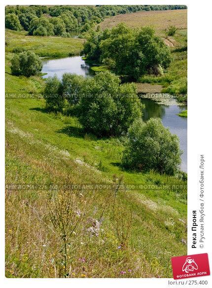 Купить «Река Проня», фото № 275400, снято 21 июля 2007 г. (c) Руслан Якубов / Фотобанк Лори
