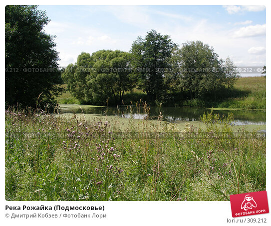 Река Рожайка (Подмосковье), фото № 309212, снято 2 августа 2006 г. (c) Дмитрий Кобзев / Фотобанк Лори