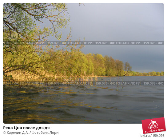 Река Цна после дождя, фото № 159076, снято 10 мая 2007 г. (c) Карелин Д.А. / Фотобанк Лори