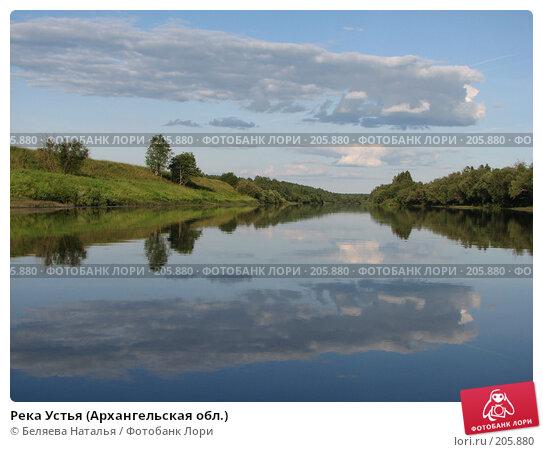 Река Устья (Архангельская обл.), фото № 205880, снято 24 июля 2007 г. (c) Беляева Наталья / Фотобанк Лори