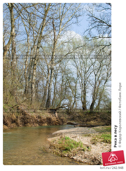 Река в лесу, фото № 242948, снято 4 апреля 2008 г. (c) Федор Королевский / Фотобанк Лори