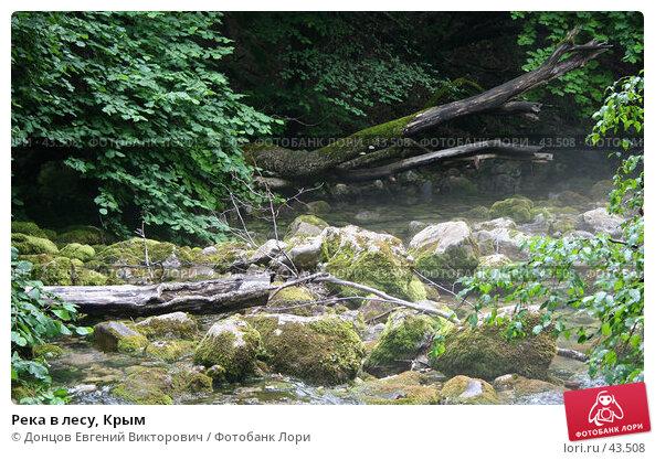 Река в лесу, Крым, фото № 43508, снято 2 августа 2006 г. (c) Донцов Евгений Викторович / Фотобанк Лори