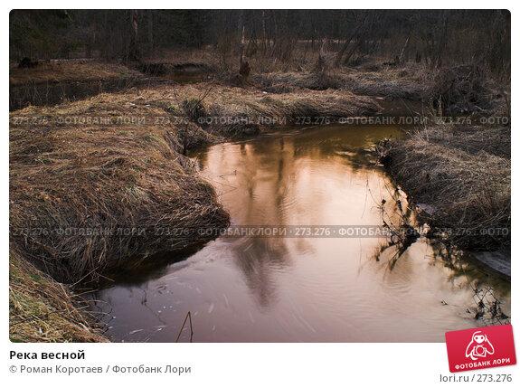 Река весной, фото № 273276, снято 24 марта 2007 г. (c) Роман Коротаев / Фотобанк Лори