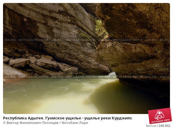 Республика Адыгея. Гуамское ущелье - ущелье реки Курджипс, фото № 248892, снято 1 мая 2006 г. (c) Виктор Филиппович Погонцев / Фотобанк Лори