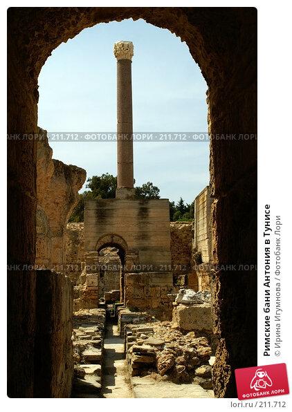 Купить «Римские бани Антония в Тунисе», фото № 211712, снято 12 июня 2006 г. (c) Ирина Игумнова / Фотобанк Лори