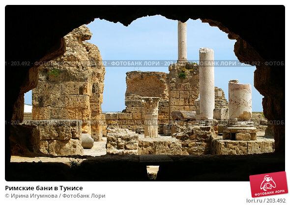 Римские бани в Тунисе, фото № 203492, снято 12 июня 2006 г. (c) Ирина Игумнова / Фотобанк Лори