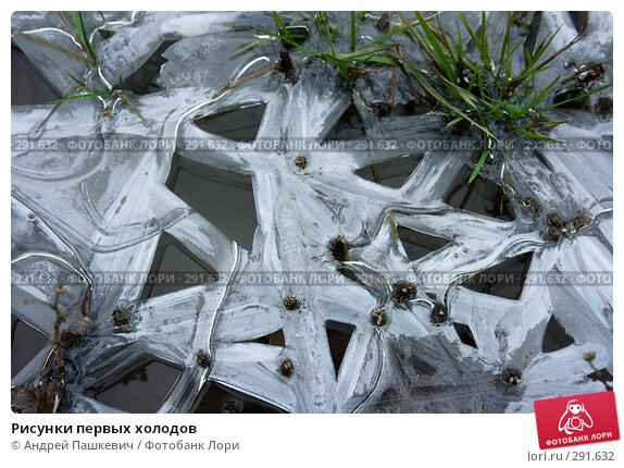 Рисунки первых холодов, фото № 291632, снято 11 декабря 2016 г. (c) Андрей Пашкевич / Фотобанк Лори