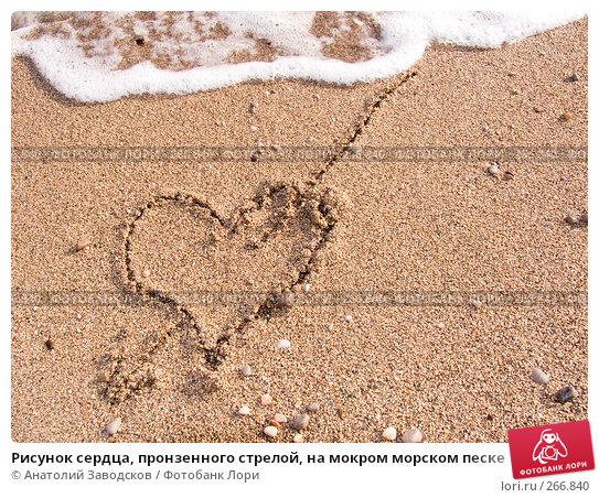 Купить «Рисунок сердца, пронзенного стрелой, на мокром морском песке», фото № 266840, снято 14 сентября 2006 г. (c) Анатолий Заводсков / Фотобанк Лори