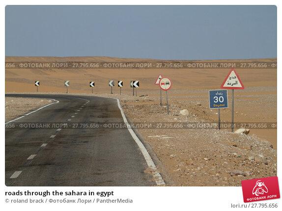Купить «roads through the sahara in egypt», фото № 27795656, снято 22 февраля 2018 г. (c) PantherMedia / Фотобанк Лори