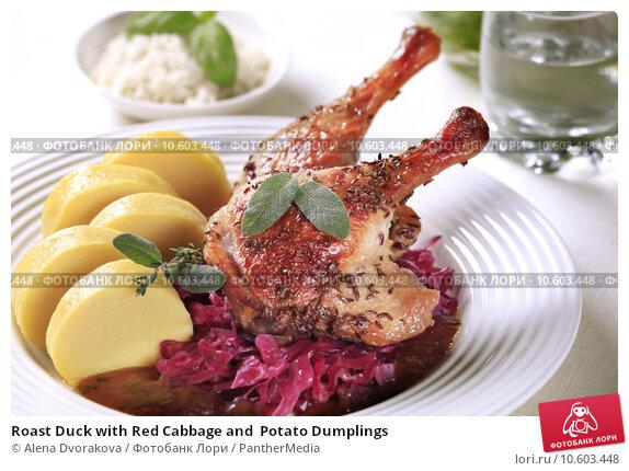 Roast Duck with Red Cabbage and  Potato Dumplings . Стоковое фото, фотограф Alena Dvorakova / PantherMedia / Фотобанк Лори