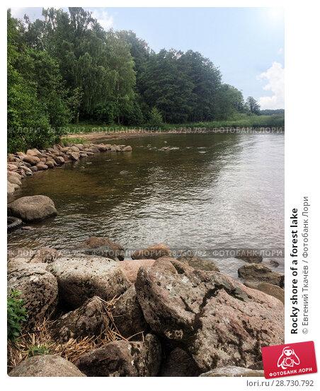 Купить «Rocky shore of a forest lake», фото № 28730792, снято 9 июля 2018 г. (c) Евгений Ткачёв / Фотобанк Лори