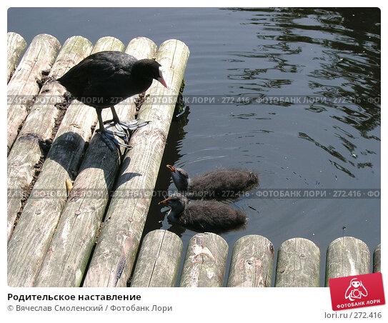 Родительское наставление, фото № 272416, снято 11 августа 2004 г. (c) Вячеслав Смоленский / Фотобанк Лори