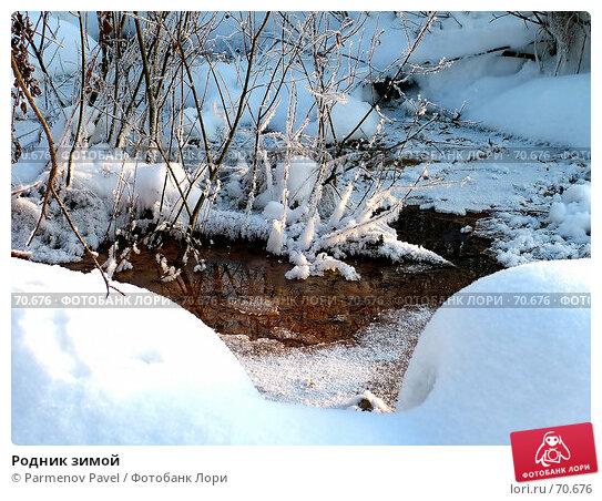 Родник зимой, фото № 70676, снято 5 января 2006 г. (c) Parmenov Pavel / Фотобанк Лори