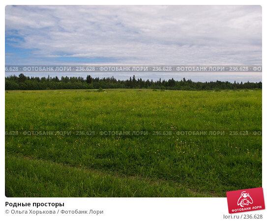Родные просторы, фото № 236628, снято 11 июня 2007 г. (c) Ольга Хорькова / Фотобанк Лори