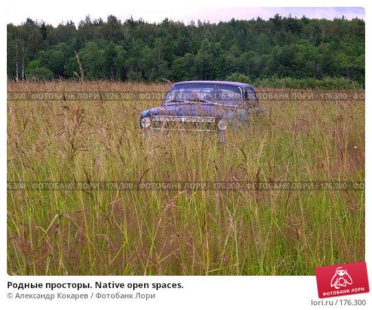 Родные просторы. Native open spaces., фото № 176300, снято 11 июля 2007 г. (c) Александр Кокарев / Фотобанк Лори