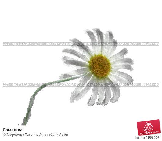 Ромашка, иллюстрация № 159276 (c) Морозова Татьяна / Фотобанк Лори