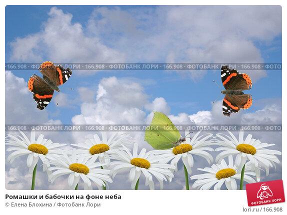 Ромашки и бабочки на фоне неба, фото № 166908, снято 24 апреля 2007 г. (c) Елена Блохина / Фотобанк Лори