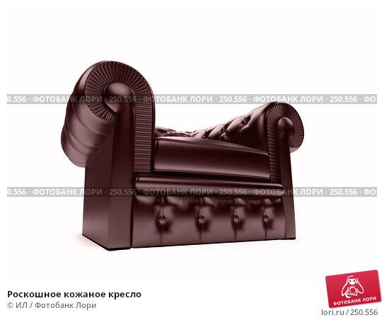 Роскошное кожаное кресло, иллюстрация № 250556 (c) ИЛ / Фотобанк Лори